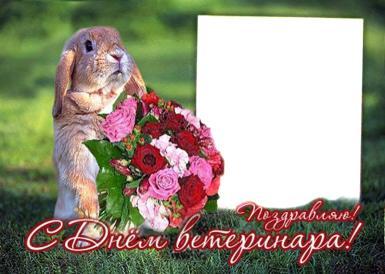 Сднем ветеринара. Кролик,букет цветов,поздравляю