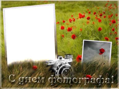 С днем фотографа. маковое поле с фотоаппаратом