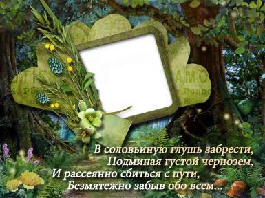 Фоторамка Очарование леса Фоторамка для фото, Фоторамка со стихами о лесе. В словьиную глушь забрести, подминая густой чернозем. И рассеянно сбиться с пути, безмятежно забыв обо всем... Лесная тропа, зеленая рамка.