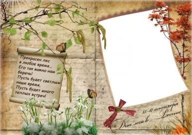Фоторамка Дни леса в России Фоторамка для фото, Открытка-фоторамка со стихами. Прекрасен лес в любое время, его так важно нам беречь! Пусть будет светлым наше время, пусть будет много теплых встреч!  Лес в разные времена года: о