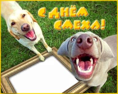 День смеха. С Днем Смеха!. Смешная открытка-фоторамка. Два смеющихся пса, рамка с Вашим фото. Отличная открытка!