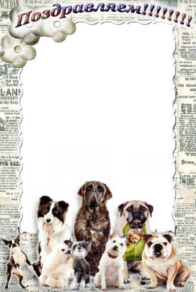 собачье поздравление. Домашние породы собак