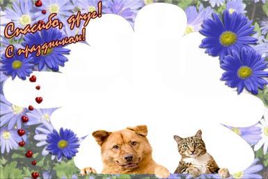 Всемирный день бездомных животных. Друзья. Спасибо, друг! С праздником!, цветы, бусы, собака, кошка