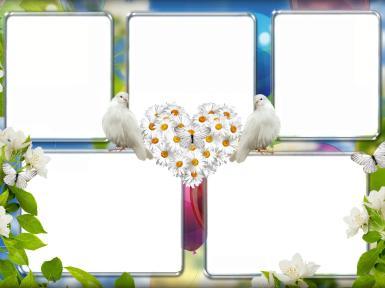 Свадебные. Рамка, фотоэффект: Любовь и забота. Голуби, ромашки, бабочки, цветы, сердце, сердечко из цветов, фотографии, любовь, супруги, дети