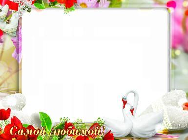 Свадебные. Рамка, фотоэффект: самой любимой. Самая любимая, романтика, любовь, лебеди, кружево, милый текст, цветы, букет, красные тюльпаны