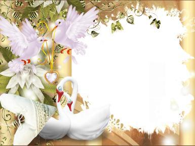 Свадебные. Рамка, фотоэффект: лебединая верность. лебеди, свадьба, молодожены, обручальные кольца, это торжественное событие, которое случается только раз в жизни и посвящается соединению сердец двух любящих и любимых людей