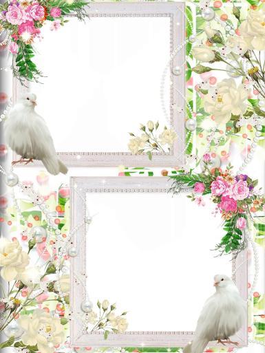 Свадебные. Рамка, фотоэффект: свадебный денек. Свадьба, невеста, жених, молодожены, голубь, цветы, бусины, жемчуг, букет, обряды, сопровождающие заключение брака, долгожданное и радостное событие
