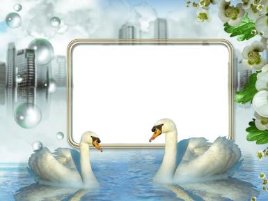 Свадебные. Рамка, фотоэффект: сонник. лебеди, озеро стыло на глазах, город, природа, цветы, любовь. романтика, свидание, встреча, если ты романтик, будь спокоен твоя женщина счастливее многих других женщин в этом мире