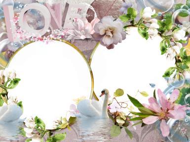 Свадебные. Рамка, фотоэффект: лебедь белый. день свадьбы