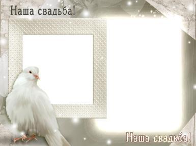 Свадебные. Рамка, фотоэффект: Рамка для свадебных фото. Двойная фоторамка