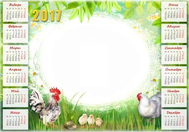 Календарь 2017 с петухом и курицей. Летний календарь на 2017 год с символом года. Петух, курица и цыплята. Семья.