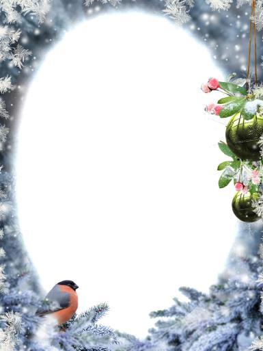 Фоторамка со снегирем. Зима, снег, ветки елки, елочные игрушки, снегирь, снежинки.