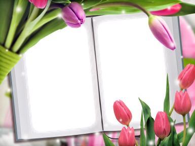 Фоторамка на страницах книги. Два фото в одной рамке. Фото на страницах книги. Красные и лиловые тюльпаны.