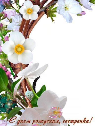 С днем рождения. Рамка, фотоэффект: С днем рождения, сестренка!. Открытка, фоторамка. Поздравить сестру с днем рождения. Весна, весенние цветы, венок. Белые цветы.