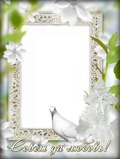 Свадебные. Рамка, фотоэффект: Совет да любовь!. Свадебная фоторамка с белым голубем. Белые цветы, светлый фон. Резная белая рамка для фото.
