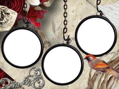 Свадебные. Рамка, фотоэффект: Тройная фоторамка с певчей птицей. Три круглые фоторамки на цепочке, певчая птица, фигурный ключ, цветы из бумаги.