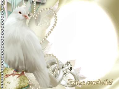 Свадебные. Рамка, фотоэффект: Фоторамка Наша Свадьба. Свадебная фоторамка с голубем. Белый голубь, жемчуг, круглая фоторамка, бриллианты.