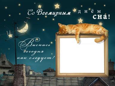 Выспись сегодня как следует!. Открытка на всемирный день сна! Выспись сегодня как следует! Открытка на всемирный день сна. Спящий кот, звездное небо, месяц, крыша дома.