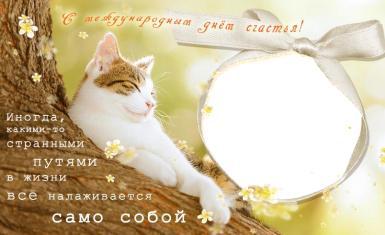 Международный день счастья. Открытка на международный день счастья. Фоторамка ко дню счастья. Поздравить с днем счастья. Открытка с котом, кошкой. Иногда, какими-то странными путями, в жизни все налаживается