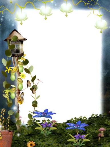 Сказочная фоторамка. Фоторамка, комнатные растения, мох, грибы, лоза, фонарики, сказочные цветы. Таинственная открытка с фотографией.