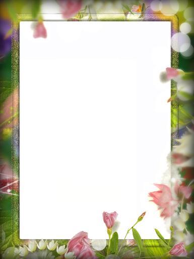 Зеленые, желтые рамки. Рамка, фотоэффект: Простая фоторамка. Простая фоторамка с цветами. Прямоугольная фоторамка. Солнечные блики, розовые цветы.