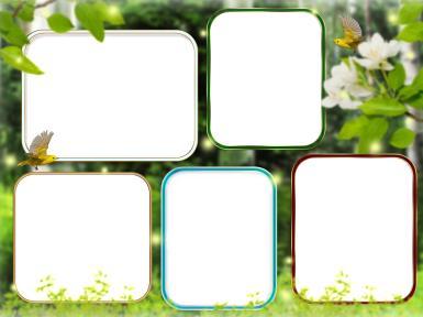 Зеленые, желтые рамки. Рамка, фотоэффект: Пять фотографий в рамке. Фоторамка с лесным пейзажем. 5 фото в рамке. Птички, бабочки, лес, трава, лужайка. Семейный фотоальбом.
