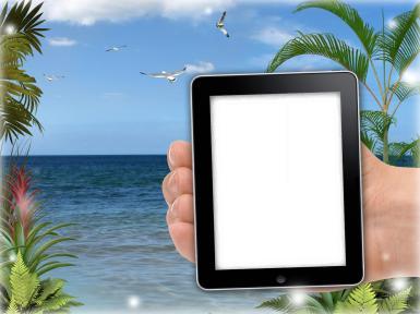 Фоторамка селфи. Фотоприкол. Фоторамка в смартфоне. Морской пляж, чайки, пальмы. Селфи на морском пляже - фотомонтаж.