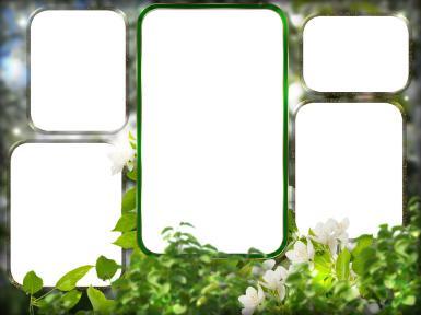 Зеленые, желтые рамки. Рамка, фотоэффект: 5 фоторамок. Пять рамок для фотографий. Зеленые листья. Лес, лето. Фоторамка с пейзажем. Фотоальбом.