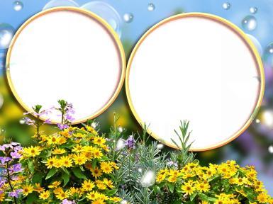 Романтика. Рамка, фотоэффект: Двойная фоторамка для садовода. Двойная круглая фоторамка с садовыми цветами. Открытка для дачника и садовода, дачные фотографии.