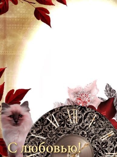 На каждый день. Рамка, фотоэффект: Фоторамка с котеноком. Фоторамка с любовью. Белый котенок с черной мордочкой, черно-белый кот, розовый котенок. Часы, циферблат, римские цифры. Винтаж.