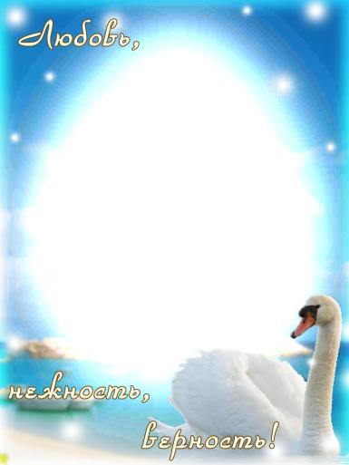 На каждый день. Рамка, фотоэффект: Любовь, нежность, верность.. Овальная фоторамка с белым лебедем. Семейная фоторамка, супруги, муж и жена, семья. Любовь, нежность, верность. Голубое небо, лазурное море, берег, остров.