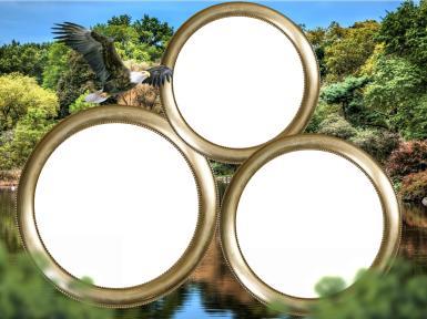 Мужские. Рамка, фотоэффект: Фоторамка с орлом. Тройная фоторамка. Дикая природа, летящий орел. Круглая фоторамка. Три фотографии в рамке. Пейзаж.