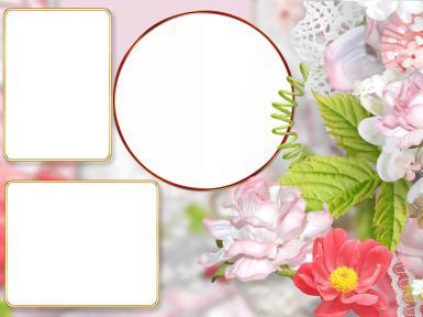 Женские. Рамка, фотоэффект: Рамка на три фотографии. Тройная фоторамка с цветами