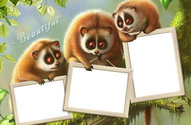 Приколы. Рамка, фотоэффект: Фоторамка со зверятами. Тройная фоторамка с милыми зверьками. Прикол с фотографией. Три фото в рамке. Скачать фоторамку. Фотоколлаж, фотомонтаж.