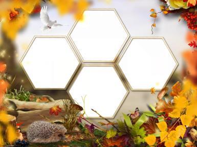 Зеленые, желтые рамки. Рамка, фотоэффект: Осень, рамка-соты.