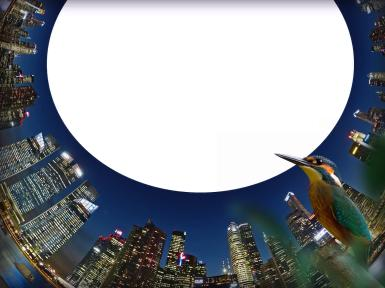 Новые рамки для фото. Рамка, фотоэффект: Мегаполис. Урбанистическая, современная фоторамка. Колибри и кусочек городского неба.
