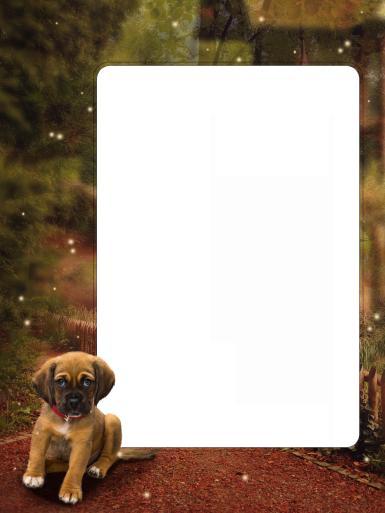 Природа, животные. Рамка, фотоэффект: Щенок. Рамка с маленьким щенком. Подойдет для оформления фотографии с домашним питомцем.
