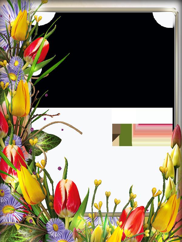 вставить фото в рамку с тюльпанами воскресший, словно