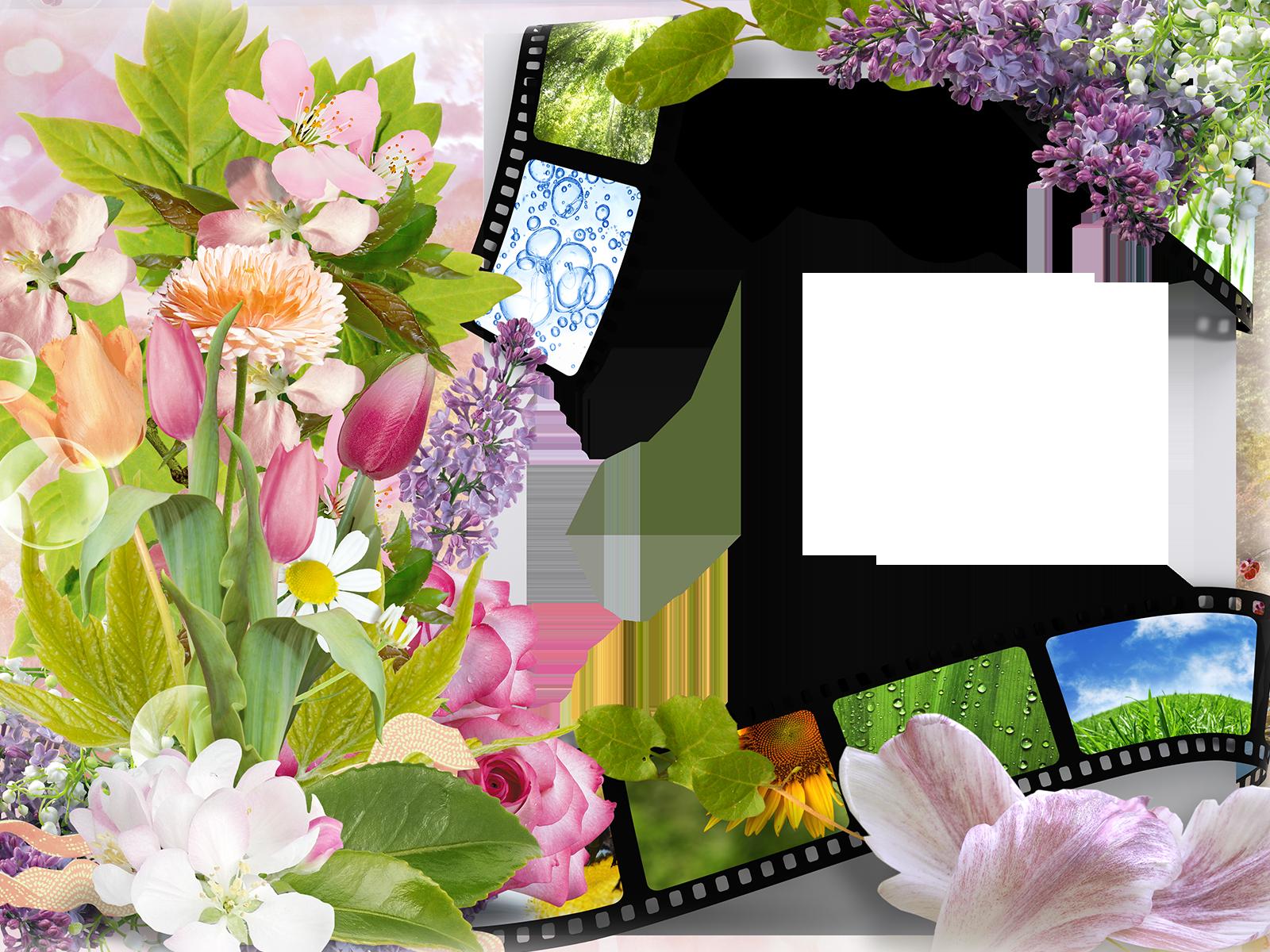 Фотомонтаж и фоторамки с цветами