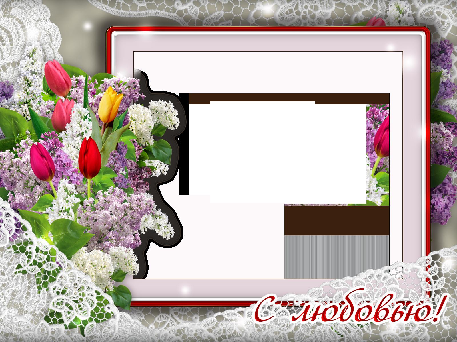 отличие садовой, вставить фото в рамку с тюльпанами прославлюся вознесу славою
