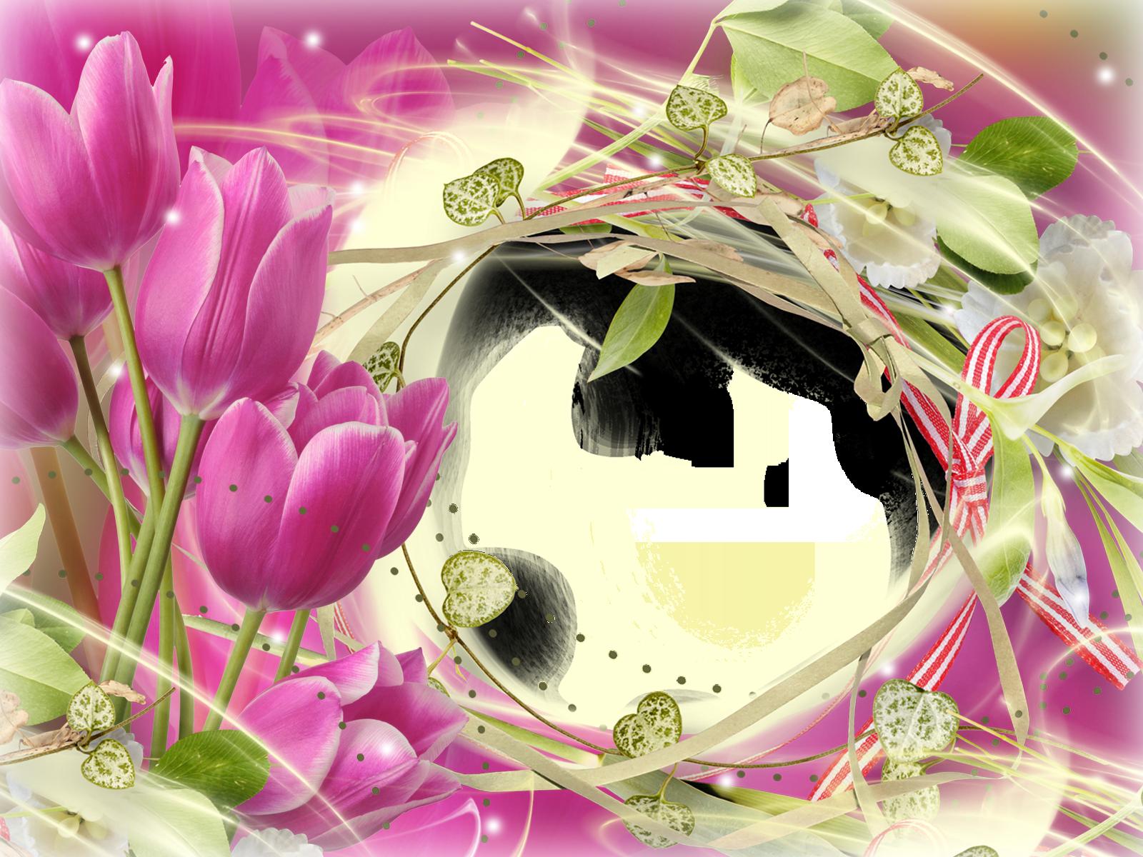 Магические домашние цветы фото может быть