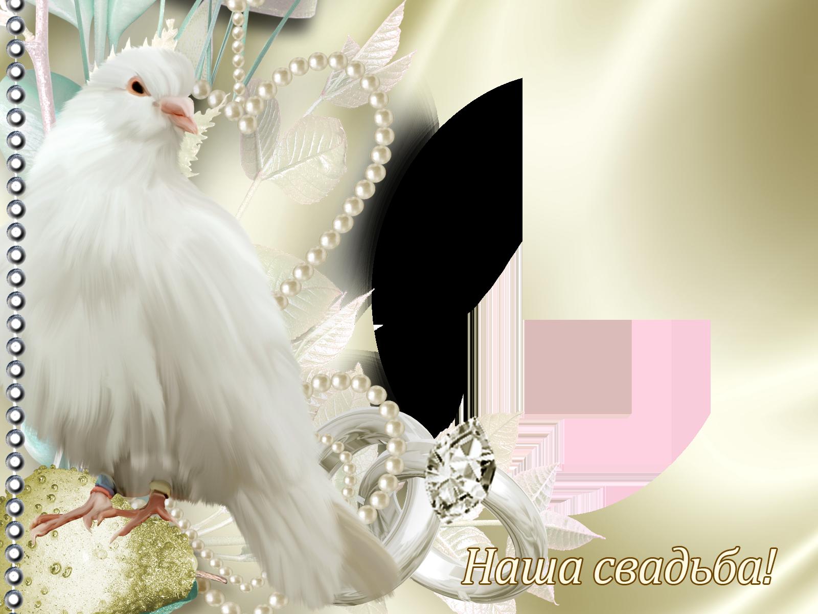 Фоторамка Фоторамка Наша Свадьба Фоторамка для фотошопа, PNG шаблон. Свадебная фоторамка с голубем. Белый голубь, жемчуг, круглая фоторамка, бриллианты.