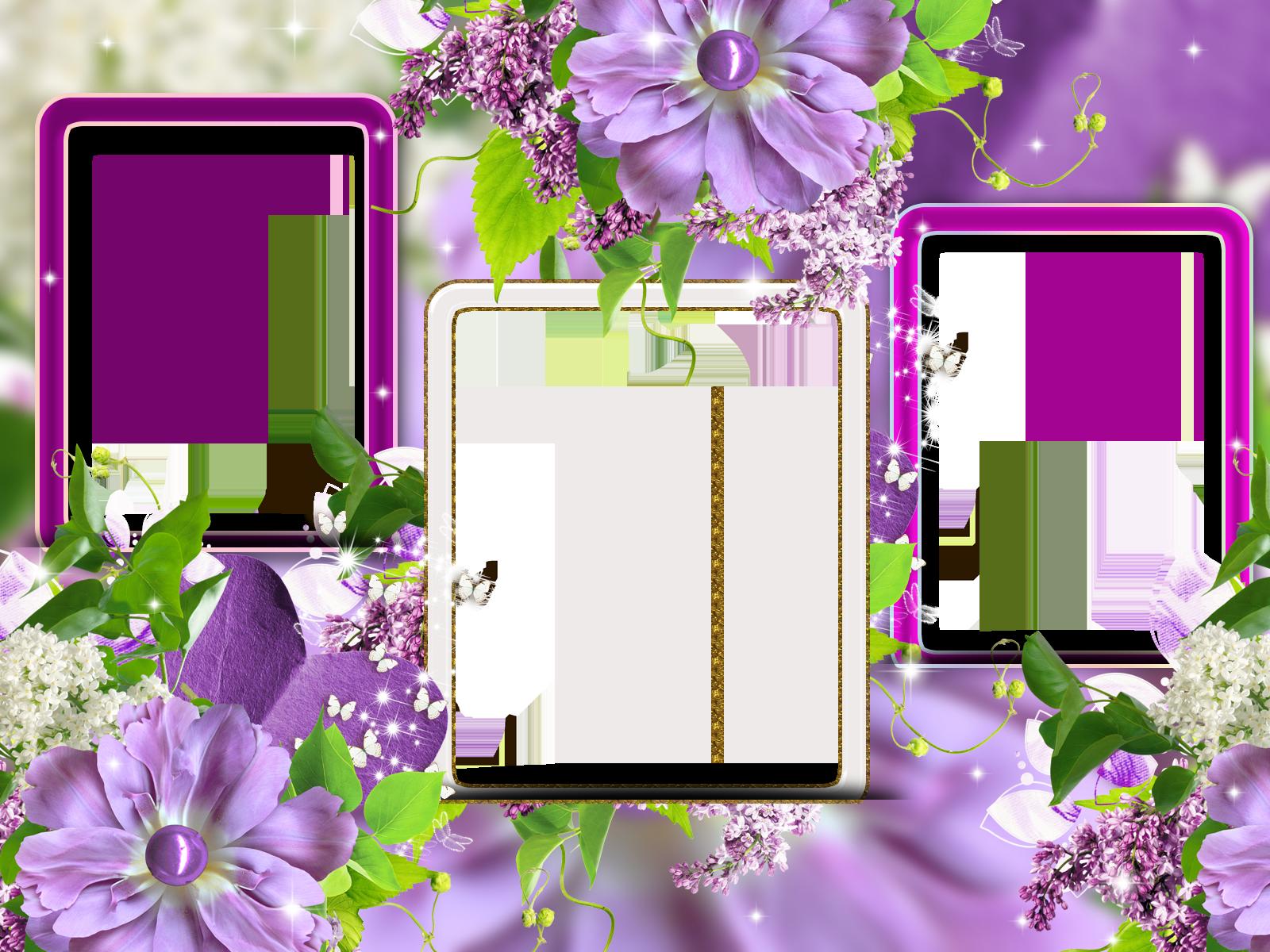 красивые рамки для фотоколлажей кишмиш относят