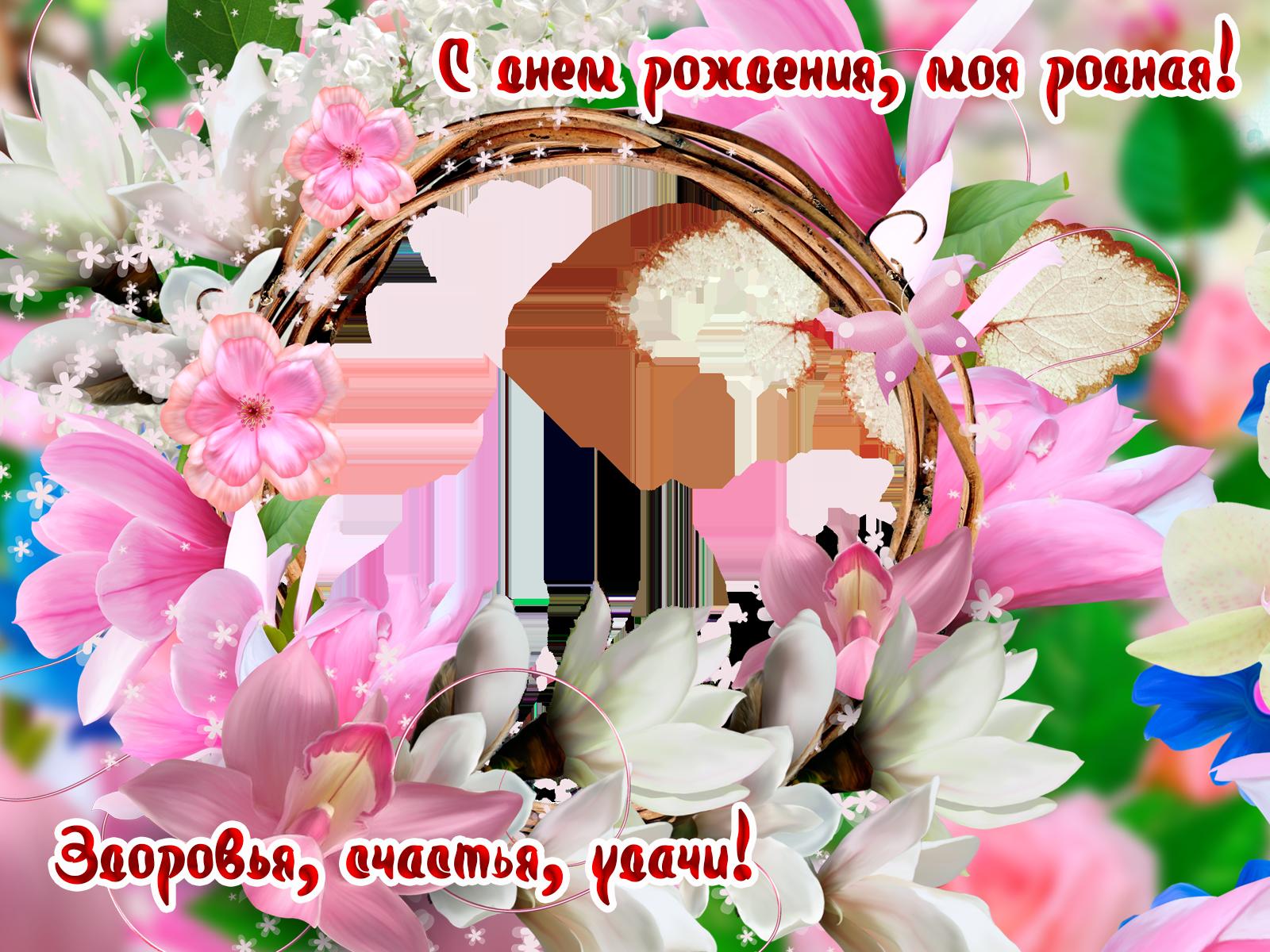Фоторамка С днем рождения, моя родная! Фоторамка для фотошопа, PNG шаблон. Круглая фоторамка на день рождения любимой, сестре, матери, дочери. Открытка на день рождения девушке. Здоровья, счастья, удачи! Розовые и белые цветы, круглая фоторамка.