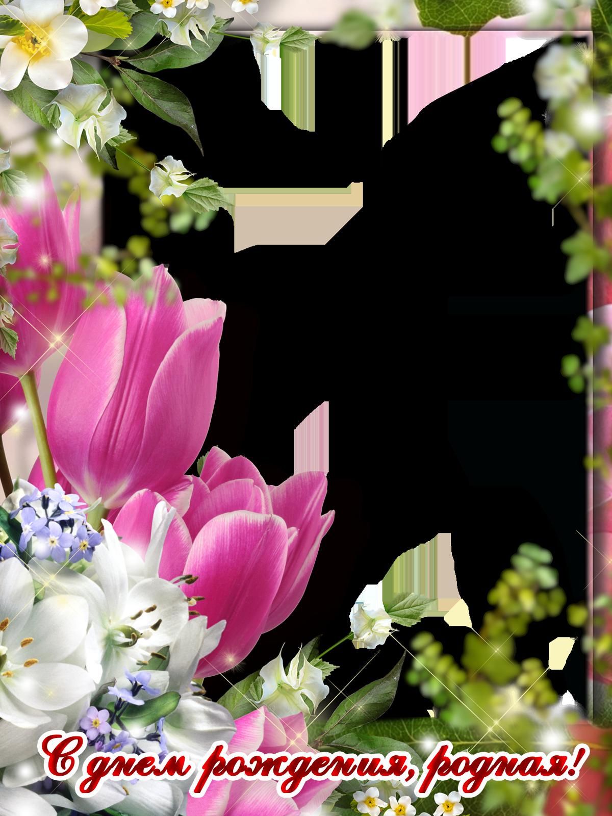 Фоторамка С днем рождения, родная! Фоторамка для фотошопа, PNG шаблон. Открытка с лиловыми тюльпанами на день рождения. Фоторамка для любимой девушки, для сестры, дочери, мамы, бабушки. День рождения. Яблоня в цвету.