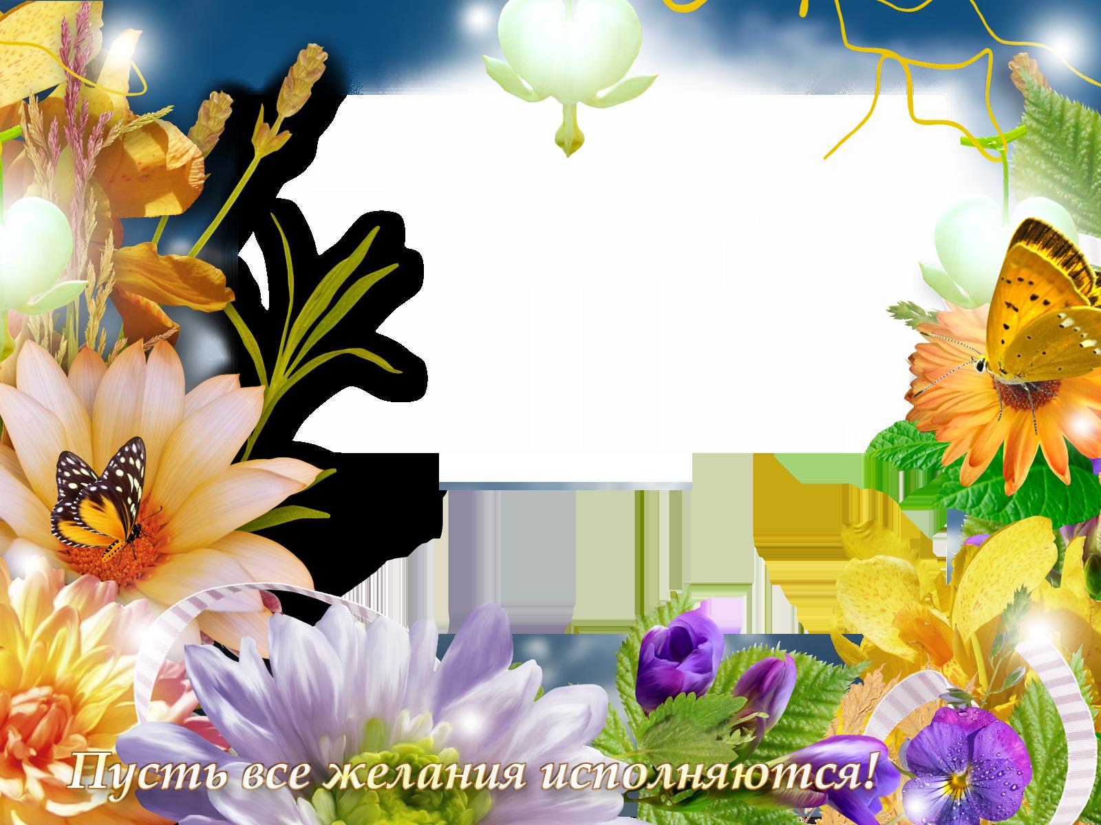 Фоторамка Пусть все желания исполняются Фоторамка для фотошопа, PNG шаблон. Открытка с фотографией, открытка для исполнения желаний, фоторамка с цветами. Пусть все желания исполняютя!