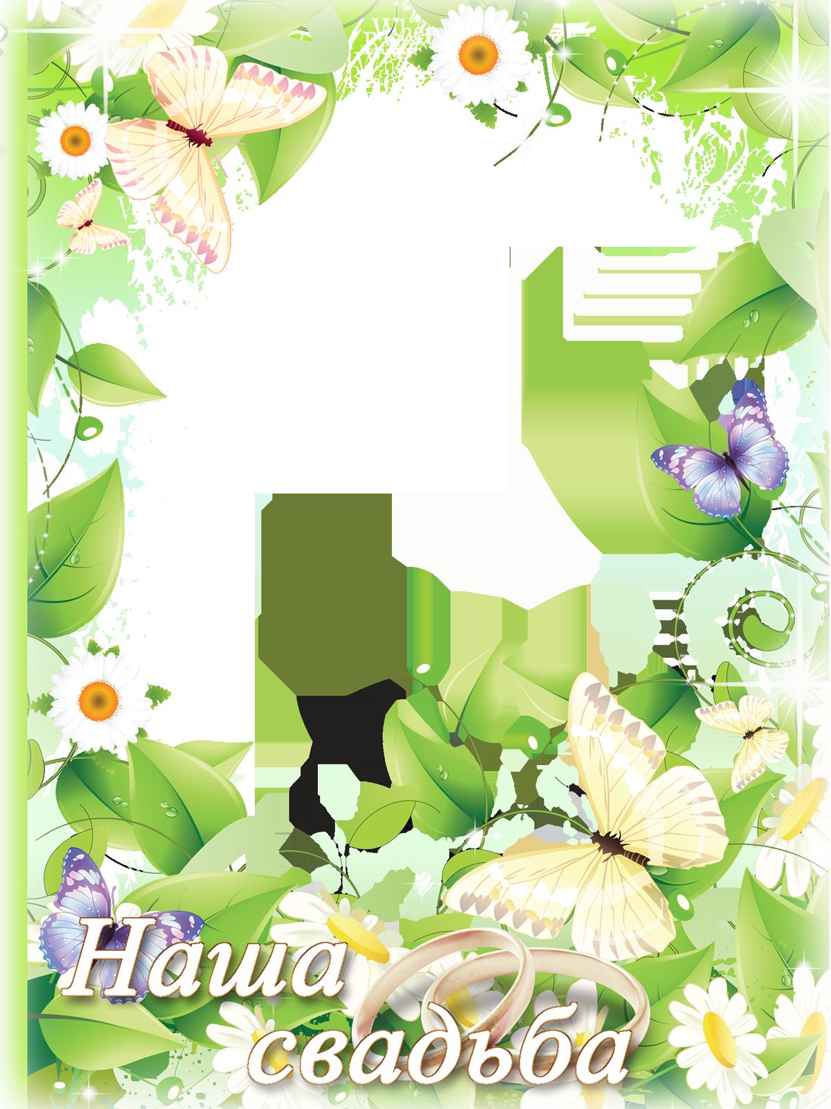Фоторамка Фоторамка Наша свадьба Фоторамка для фотошопа, PNG шаблон. Свадебная фоторамка с ромашками. Сиреневые и желтые бабочки. Наша свадьба. Лето, ромашки.