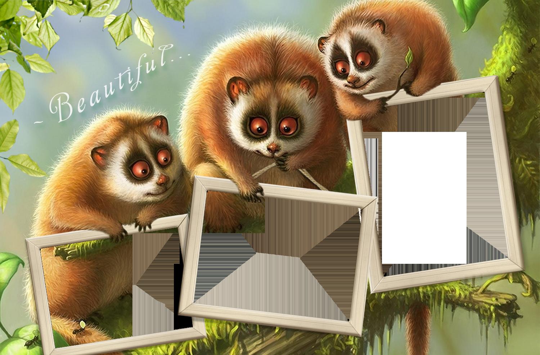 Фоторамка Фоторамка со зверятами Фоторамка для фотошопа, PNG шаблон. Тройная фоторамка с милыми зверьками. Прикол с фотографией. Три фото в рамке. Скачать фоторамку. Фотоколлаж, фотомонтаж.