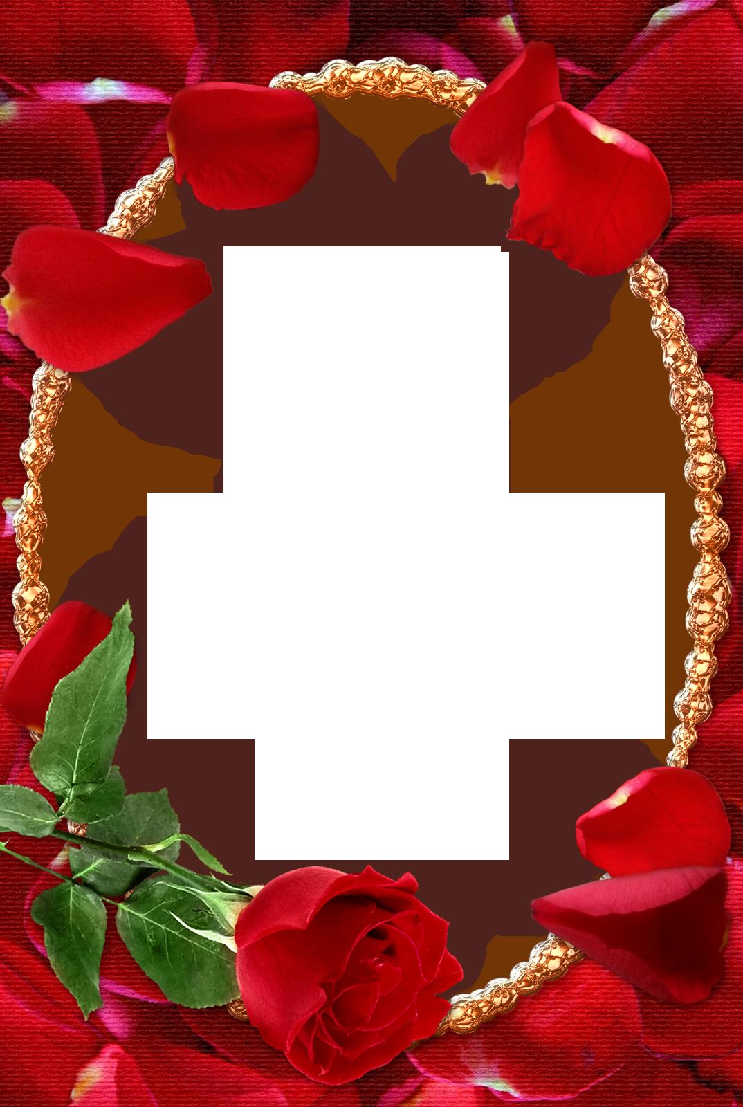 Фоторамка Красные розы Фоторамка для фотошопа, PNG шаблон.