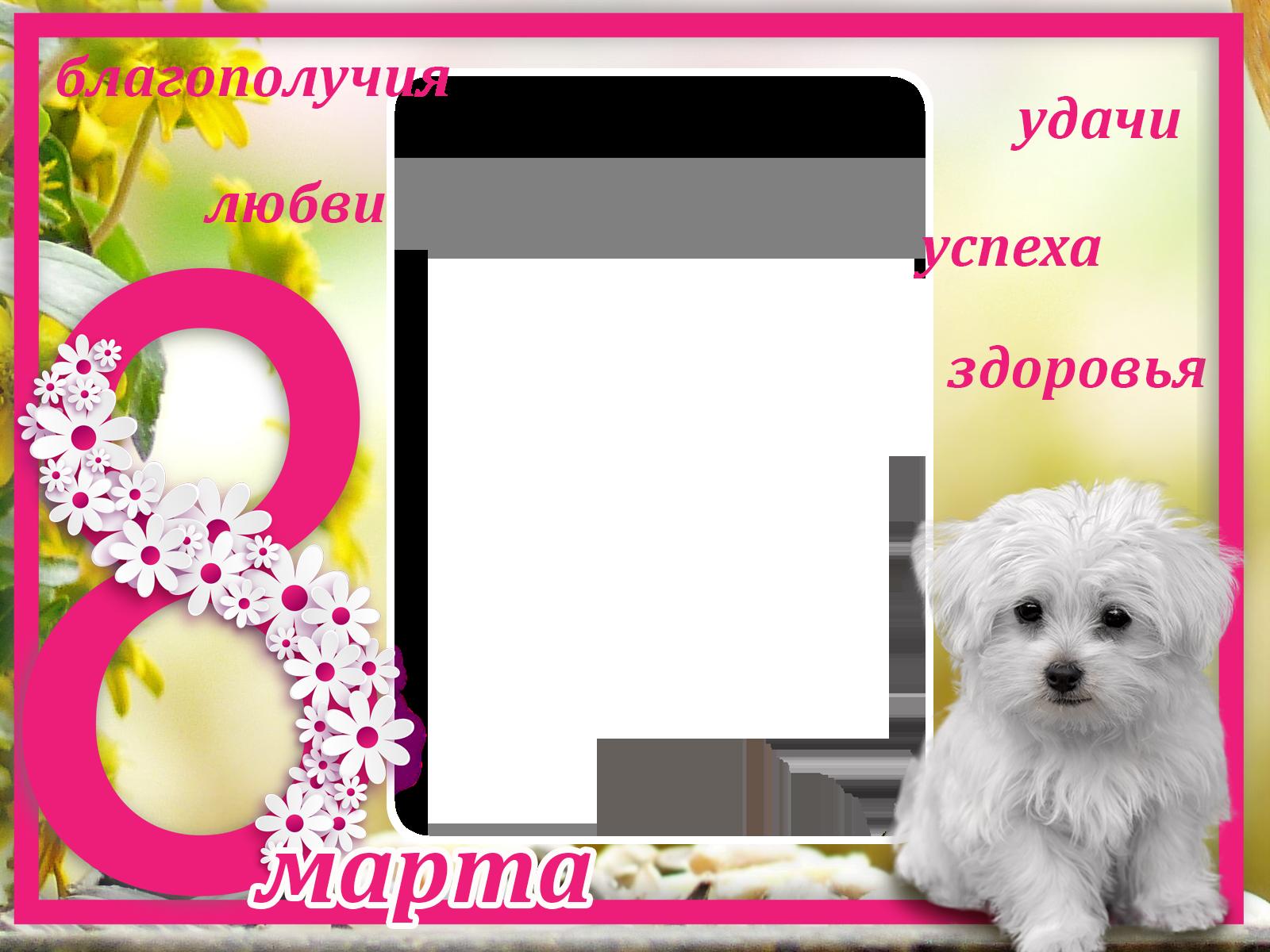 Фоторамка 8 Марта Фоторамка для фотошопа, PNG шаблон. Благополучия, любви, удачи, успеха, здоровья!